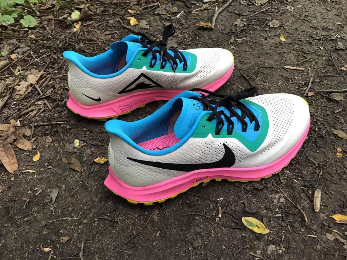 Nike Zoom Pegasus 36 Pair